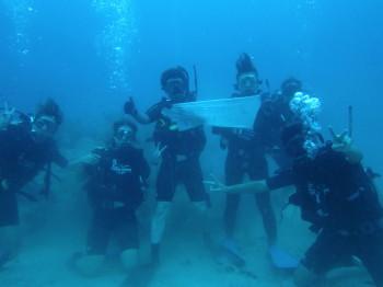 100本記念、タオ島、ダイビング