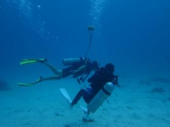 タオ島、中性浮力、ダイビング