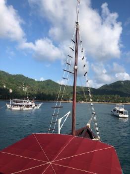 タオ島、ライセンス取得