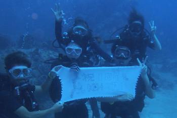 タオ島、ダイビング、100本記念