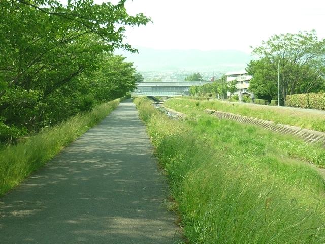 天神川の堤防