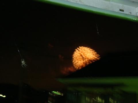 20120810.jpg