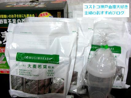 CIMG06102013 003
