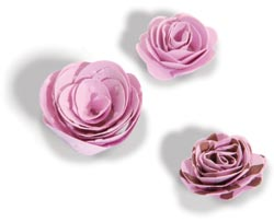 444190 Sizzix Bigz Die (3-D Flowers) 2000円