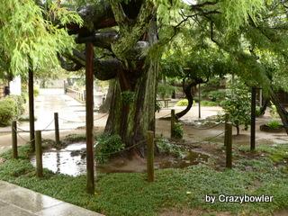大聖院(横浜市港北区日吉)