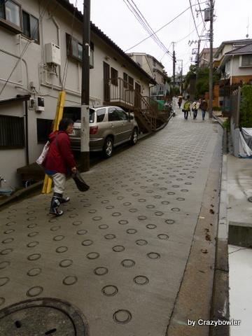 慶応大学日吉キャンパス北斜面