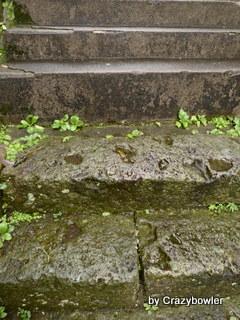 井田2丁目の階段