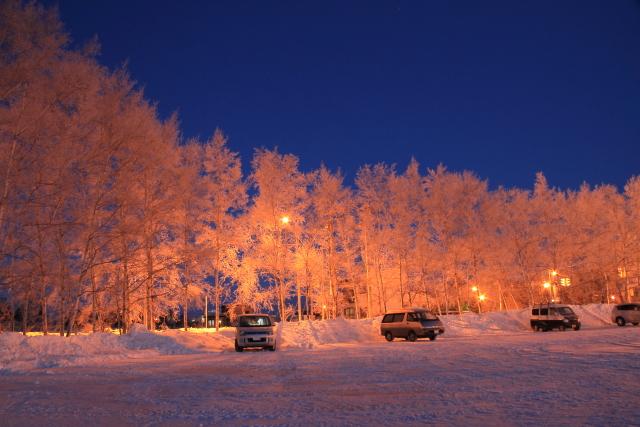 033夜明け前の樹氷