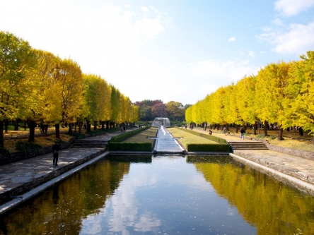 昭和記念公園001_R