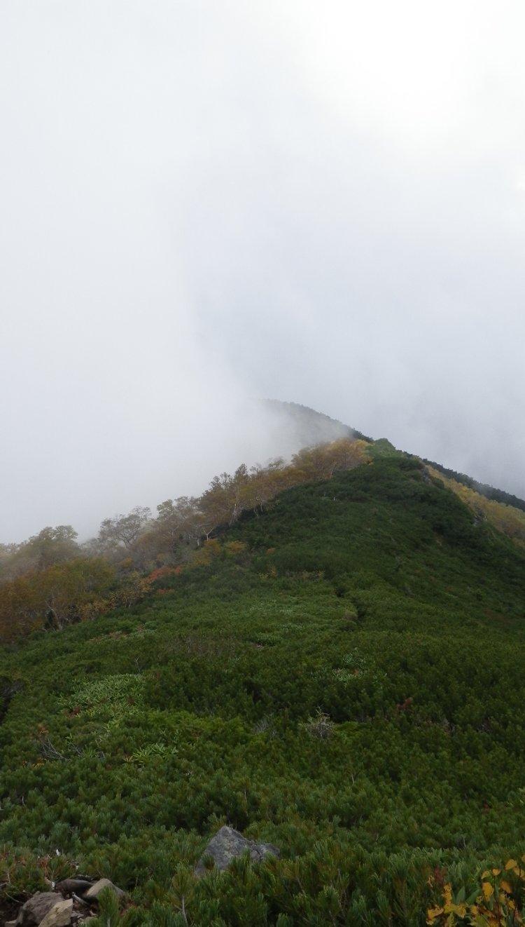 杣添横岳15