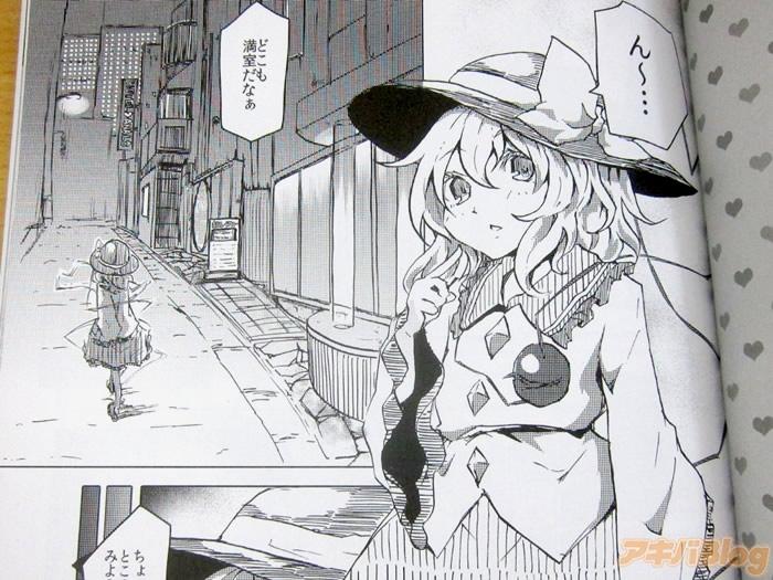 akibaburogu.jpg