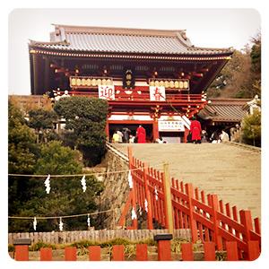初詣で行った鎌倉の鶴ヶ岡八幡宮