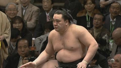 2013年初場所5日目 日馬富士関のほっぺにキズパワーパッドが!