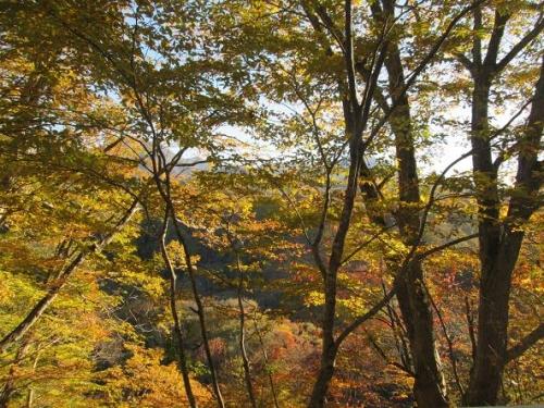 行楽の秋の候20