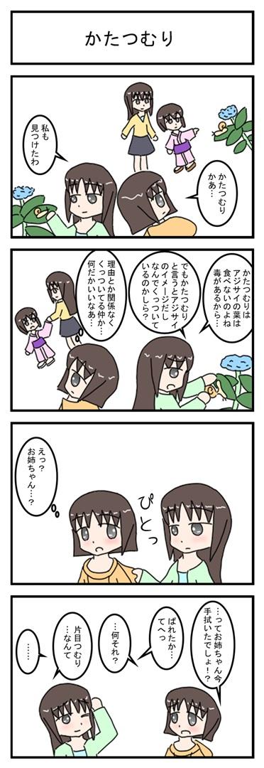 katatumuri_001.jpg