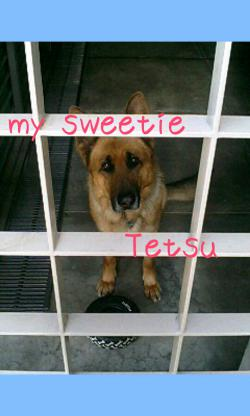 my sweetie TETSU