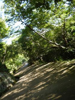 森林公園~!!!