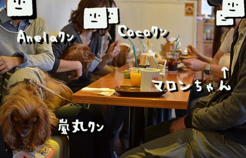 DSC_4128.jpg