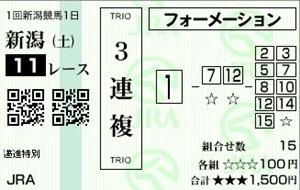 20120505新潟11R