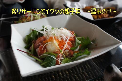 炙りサーモンとイクラの親子丼 ~温玉のせ~
