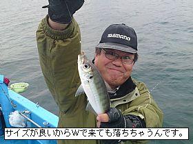 201212282285_11_web.jpg