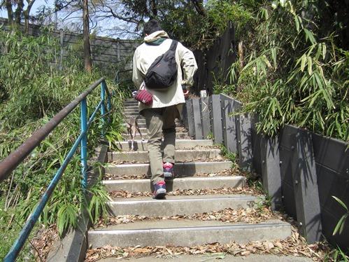 0320新しいお散歩エリア_01