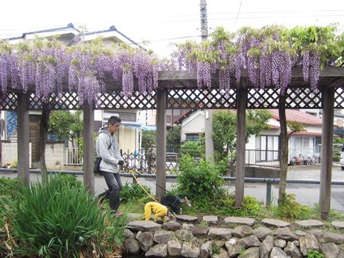 0421お散歩_03