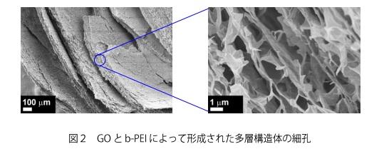 kyoto-u_b-PEI-GO_complex_microhole_image.jpg