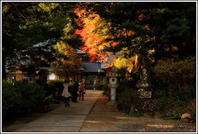 2014年11月15日御橋観音 (7)