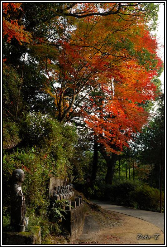 2014年11月15日御橋観音 (28)