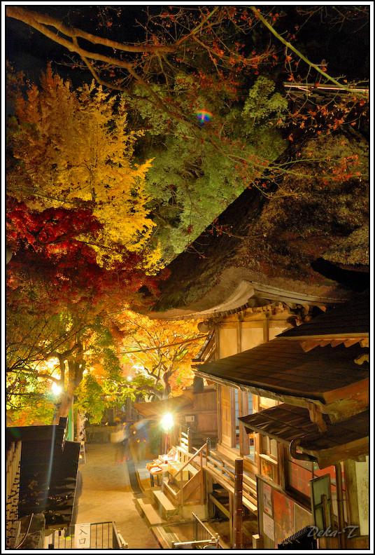 2014年11月23日大興善寺 (106)