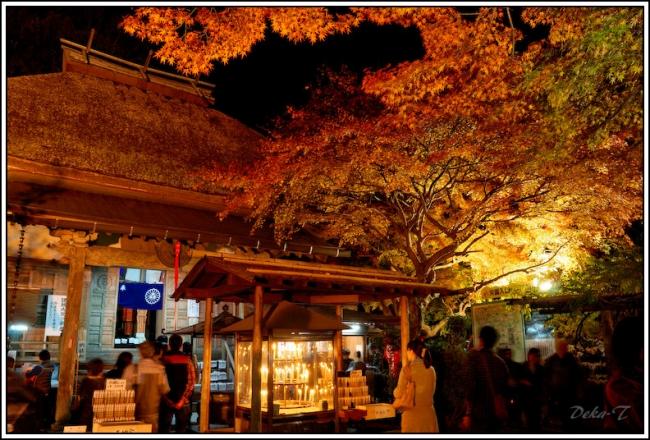 2014年11月23日大興善寺 (23)