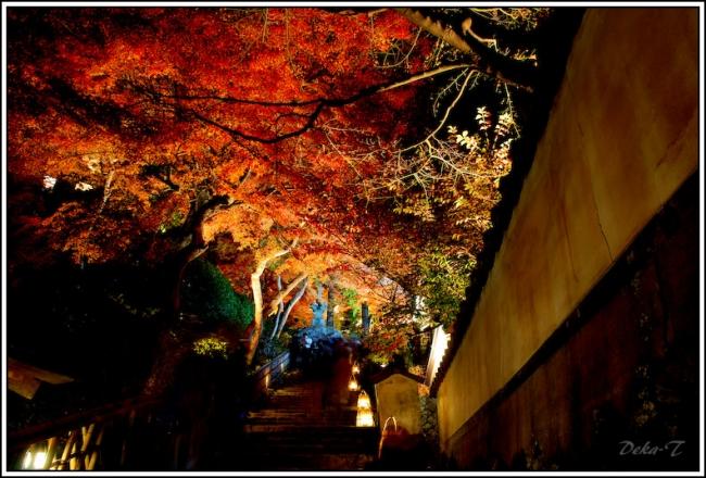 2014年11月23日大興善寺 (29)