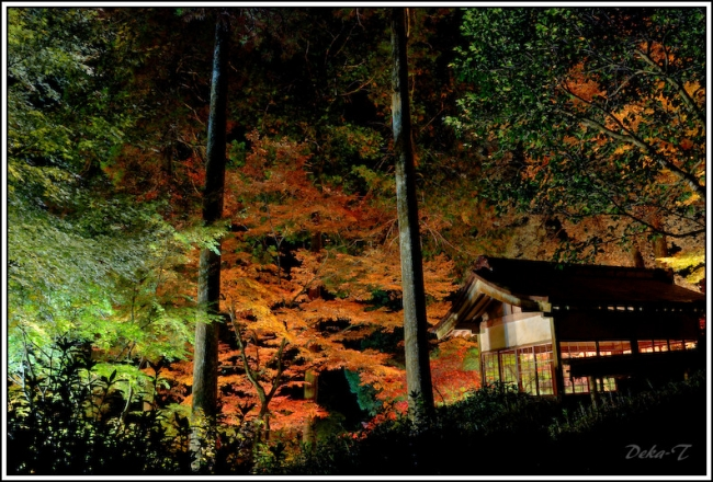 2014年11月23日大興善寺 (63)