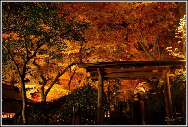 2014年11月23日大興善寺 (67)