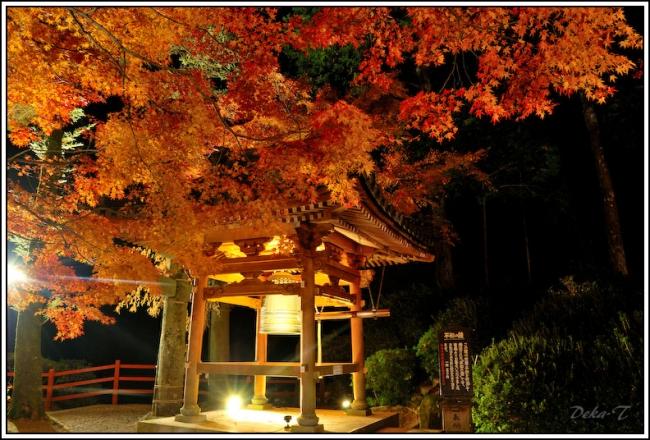 2014年11月23日大興善寺 (118)