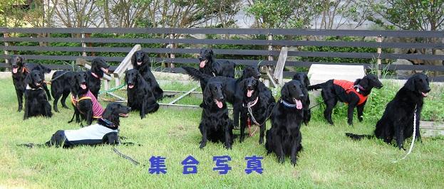 201257syuugousyashinn.jpg