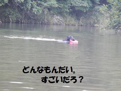 2012hatukawa6.jpg