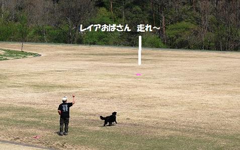 2012reiadesuku.jpg