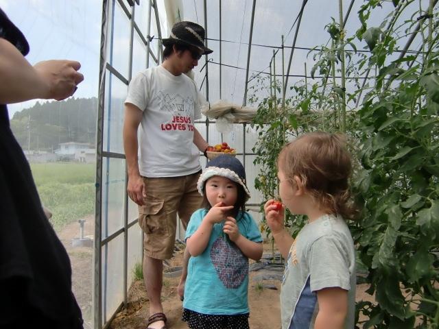 収穫体験 子供