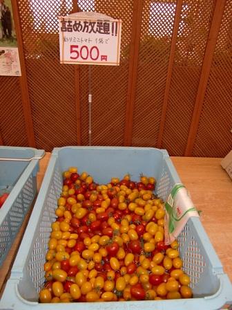 ミニトマトつめ放題