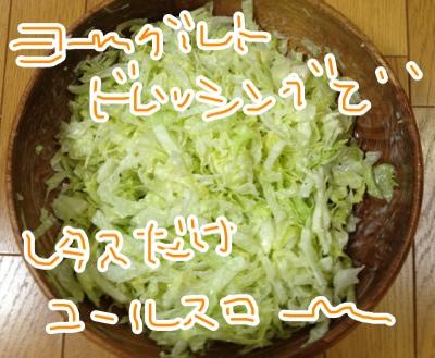 fc2blog_201304021421038f5.jpg