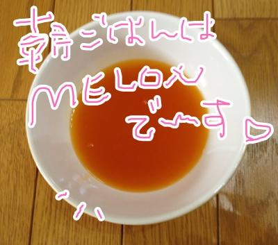 fc2blog_201304071059289fe.jpg