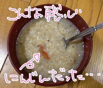 fc2blog_2013040721135414e.jpg
