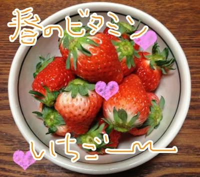 fc2blog_2013041021063960b.jpg