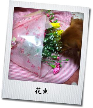 プレゼント4