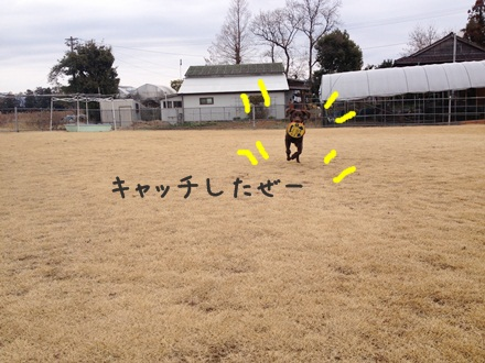 IMG_2816.jpg