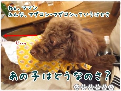 IMG_14661.jpg