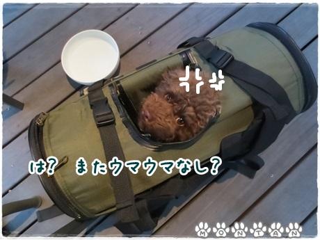 IMG_9616.jpg