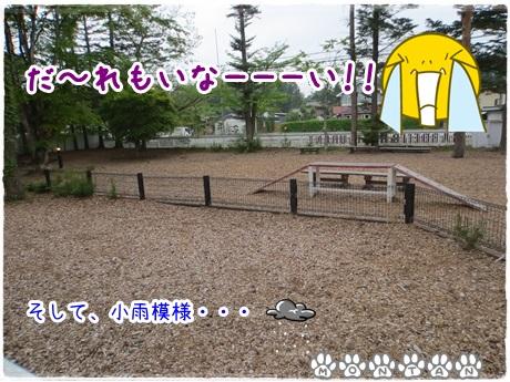 IMG_9646.jpg